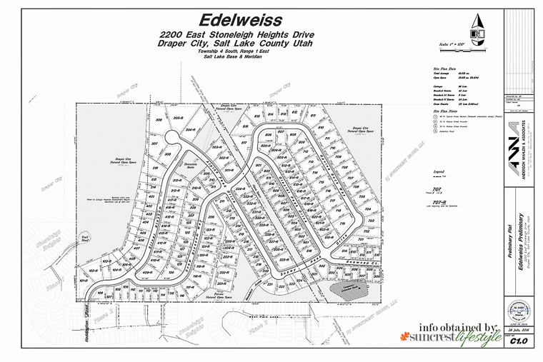 2016 Edelweiss Preliminary Plat Map